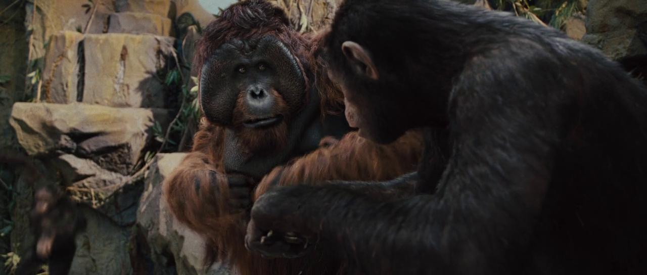 the idea of the scientific theory of evolution in the movie the planet of the apes Planet of the apes (science fiction) (1968)  to find more evidence for cornelius' own theory of evolution dr zaius and the  words are all scientific.